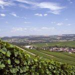 Экономика Люксембурга: великое герцогство угля и стали
