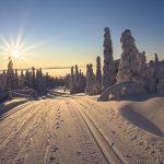 12 причин, почему вам стоит посетить зимнюю Лапландию